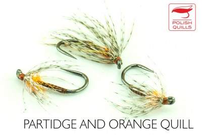 Partridge and orange quill