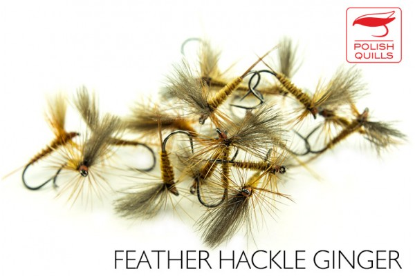 Feather hackle