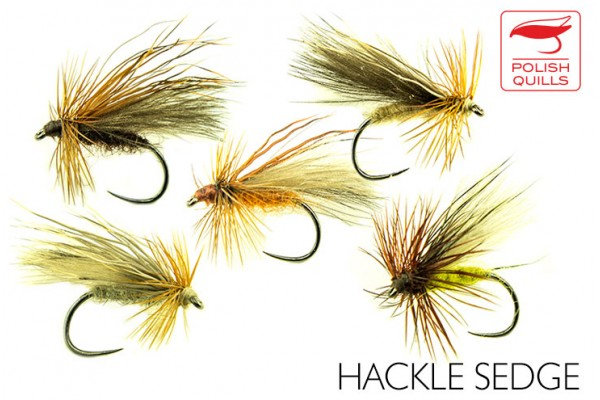 Hackle sedge