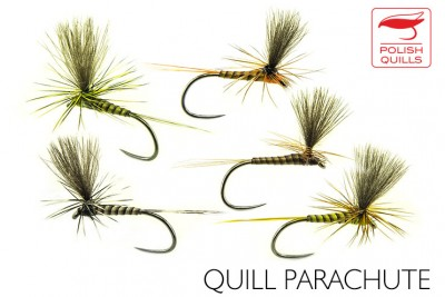 Quill parachute