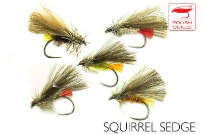 Squirrel sedge