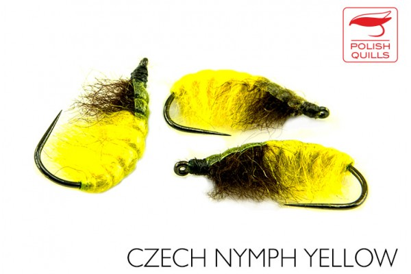 Czech nymph