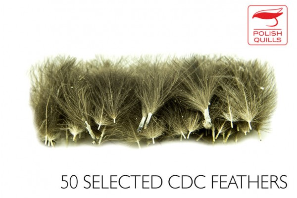 Selected CDC - 50 pcs