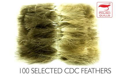 Selected CDC  - 100 pcs