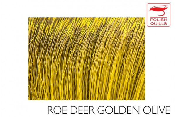 Roe deer  hair